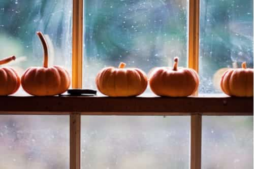 Pumpkins Halloween Deacon insurance Trick or Treat